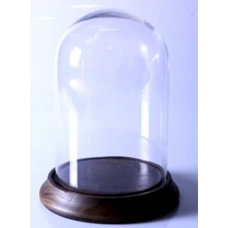 ampana di vetro espositore legno vetro contenitore 32cm