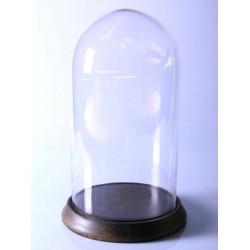 Campana di vetro espositore legno vetro contenitore 48cm